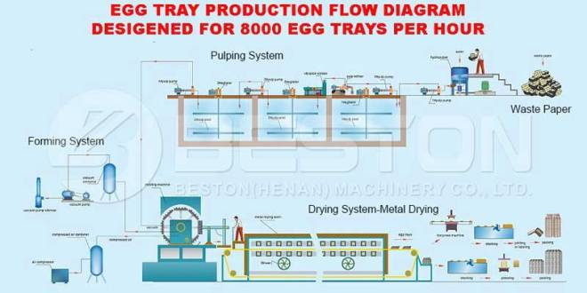 Egg Carton Manufacturing Process