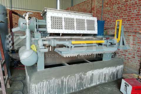 Egg Tray Machine Price India